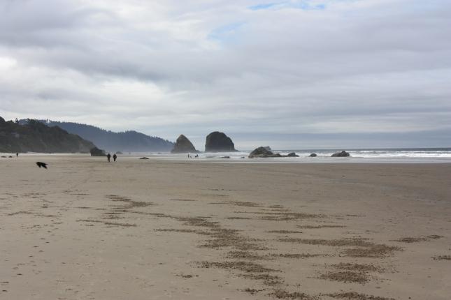 cannon-beach-037.jpg