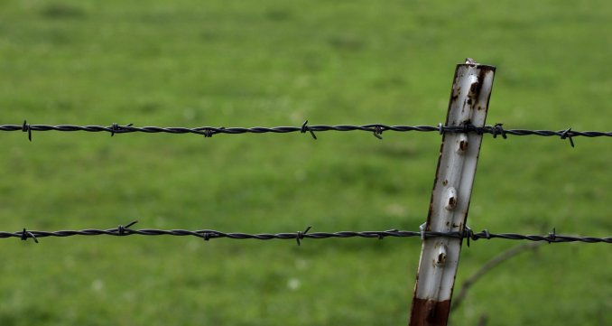 Barbed_Wire_Fence