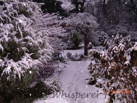 SNOWWALKWAY