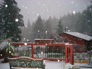 SNOW APRIL08