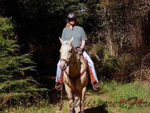 Lily3bittlessbridle