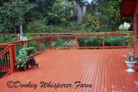 Large deck in total privacy