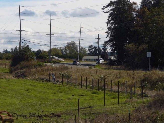 fenceposts3