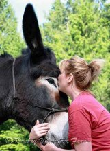 Will You Help To Stop Another Donkey Basketball School Fund RaiserEvent?