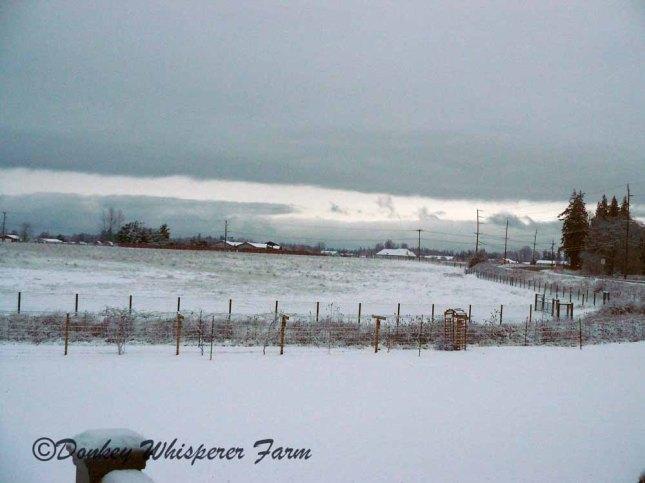 snowsequimfarm201333333