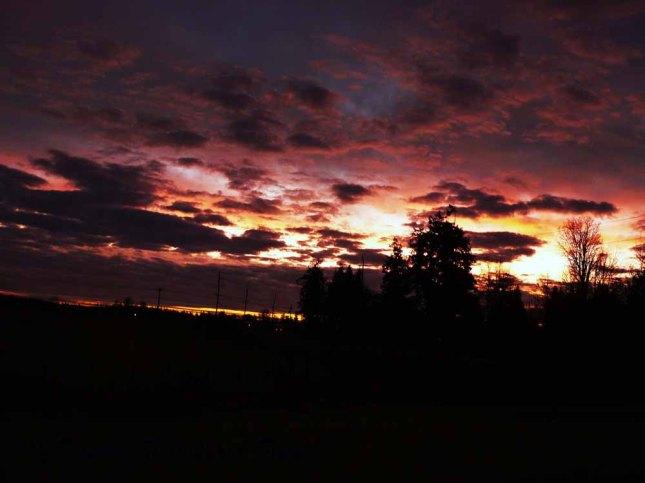 Sunrisesequimfarm
