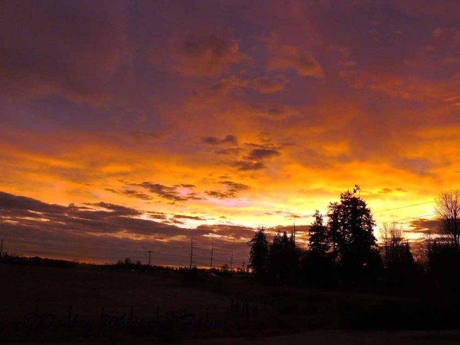 sunsetsequim2013sonice