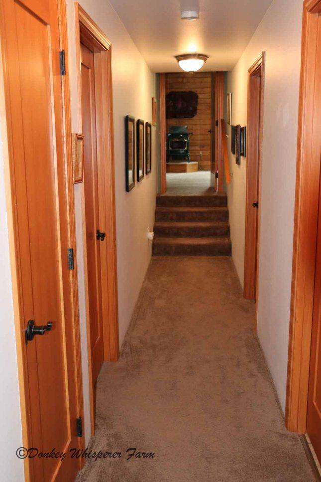Hallwaytotwobedroomsanotherlivingroom2bathrooms
