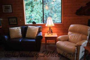 second living room, pine and 4 large windows along with another propane fireplace (no wood cutting)