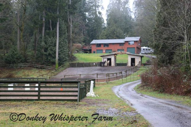 Driveway to the farm for sale in Kingston, WA on five acres