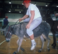 Take Action To Stop Another Donkey Basketball Game