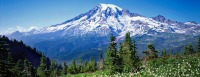 Living In The Pacific Northwest, Western Washington GOD'sCountry