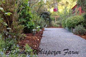gardenwalkway2014