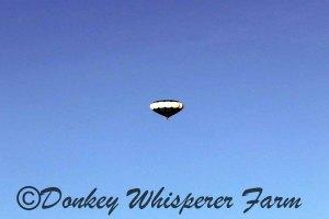 balloonfarmsequim2014june21