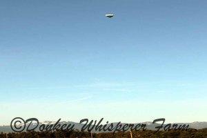hotairballoon6210141
