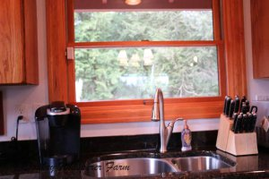 kitchenwindowsinkgranitecountertops