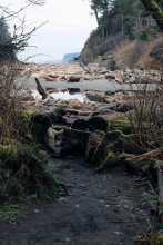 Ruby Beach, Ocean and Lake Crescent, March, 1st,2015