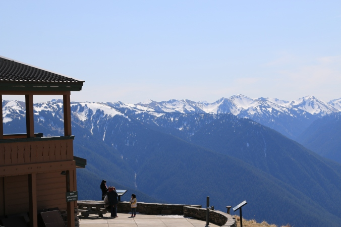 Sitting Area of Hurricane Ridge, can see this mountain from our farm in Sequim, WA
