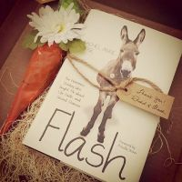 Contest To Win A Free Book – Flash The Homeless Donkey