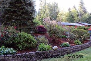 gardenhouse2014april