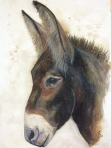 I think this is Oboe from the Donkey Whisperer Farm. Watercolour donkey painting