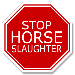 Our Horse Slaughter Stop Sign Decal is approximately 4 by 4 inches and is 100% waterproof. Click to order. ­