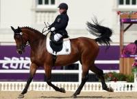 Equestrian 2016
