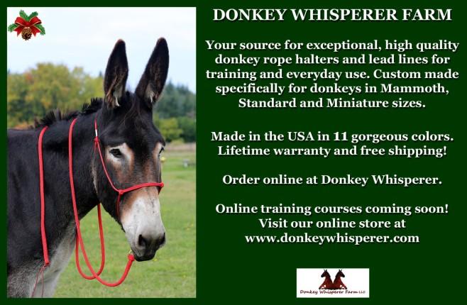 donkeywhisperermulesandmoread-002