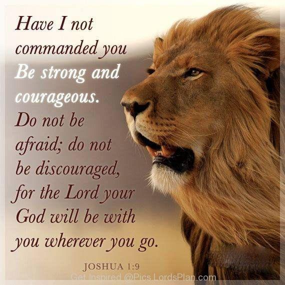 couragelionbible3ea5485e12fbbcfd32756c91a05cadc2