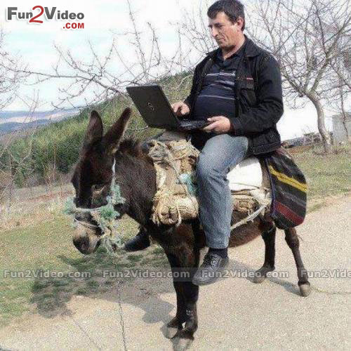 it-man-riding-donkey