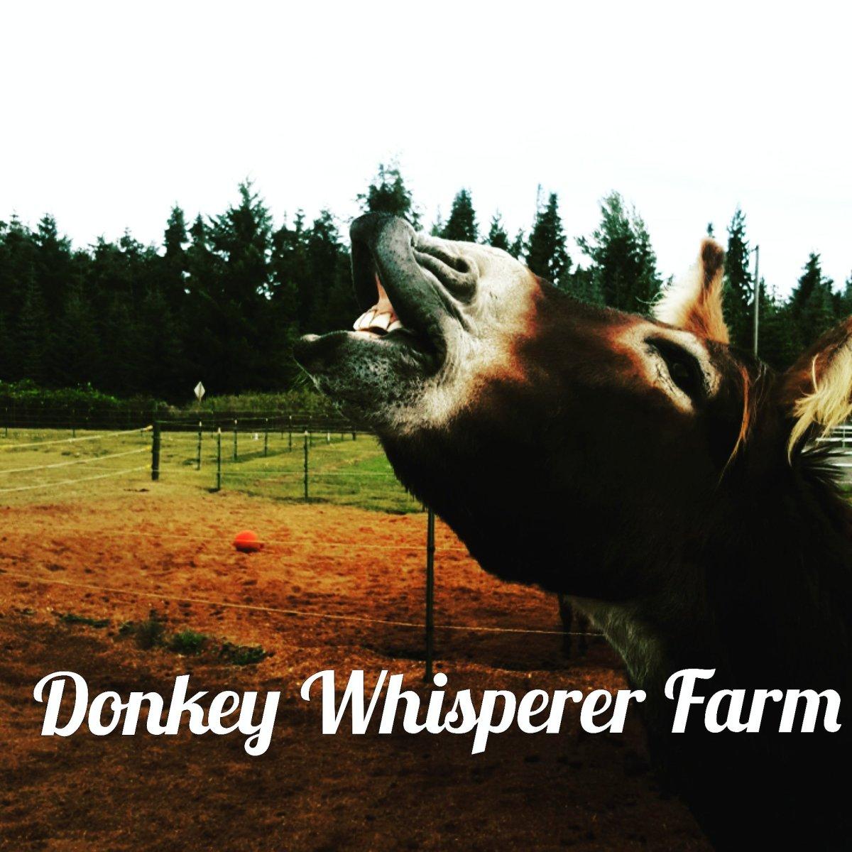 """Training A Donkey """"Emotional Intelligence"""""""